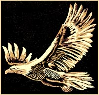 Eagle-Flight-M